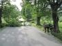 Odstranjevanje drevesa